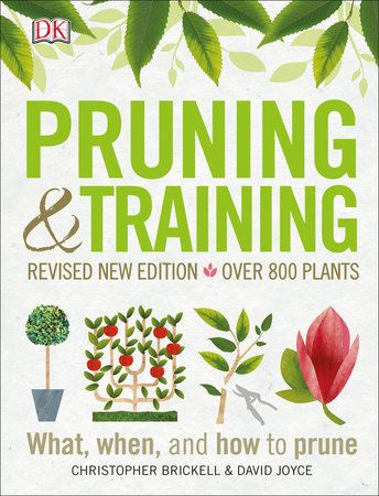 Pruning and Training, Revised New Edition by DK