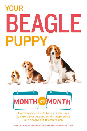 Your Beagle Puppy Month by Month by Terry Albert