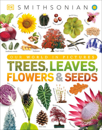 Trees, Leaves, Flowers and Seeds by DK