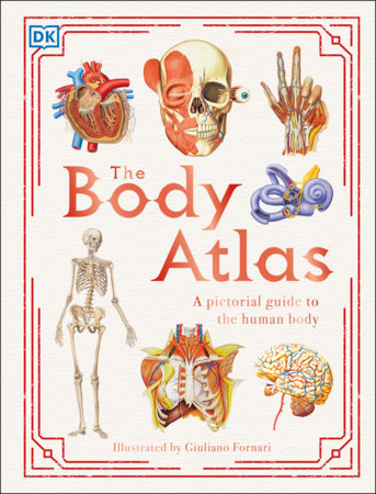 The Body Atlas by DK