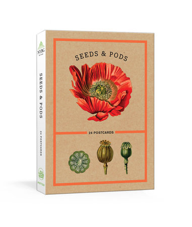 Seeds and Pods by The New York Botanical Garden