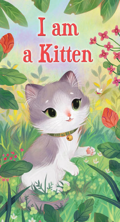 I am a Kitten by Ole Risom; illustrated by Olivia Chin Mueller