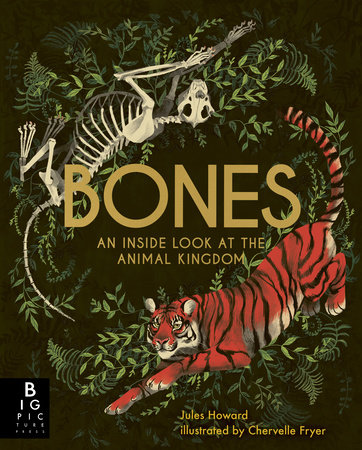 Bones: An Inside Look at the Animal Kingdom by Jules Howard