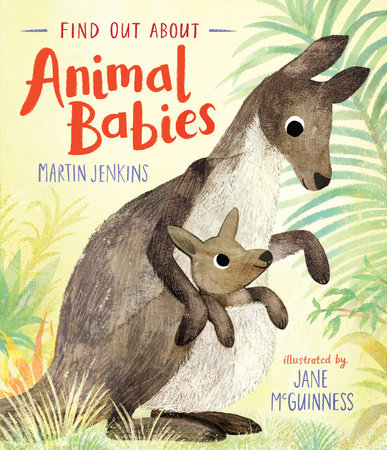 Find Out About Animal Babies by Martin Jenkins