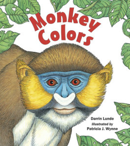 Monkey Colors