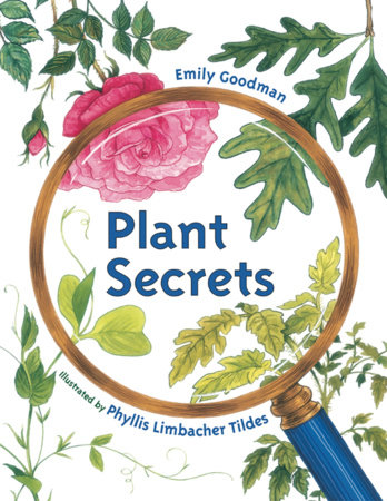 Plant Secrets by Emily Goodman