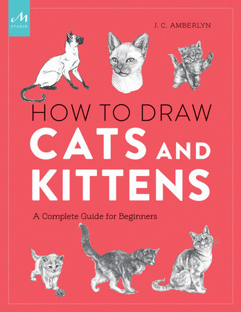 How to Draw Cats and Kittens by J.C. Amberlyn