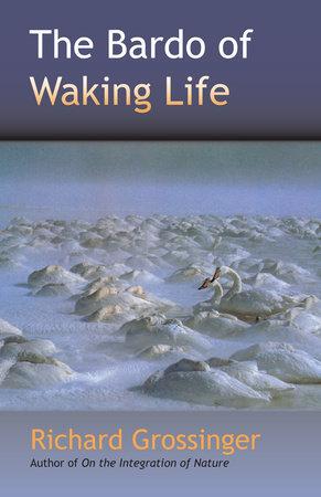 The Bardo of Waking Life by Richard Grossinger