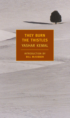 They Burn the Thistles by Yashar Kemal