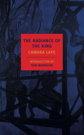 The Radiance of the King by Camara Laye