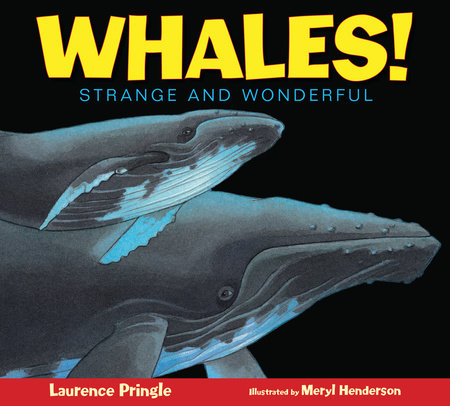 Whales! by Laurence Pringle
