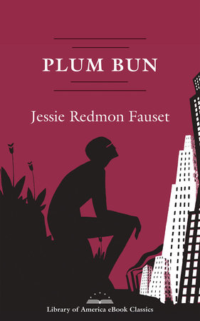 Plum Bun: A Novel Without a Moral by Jessie Redmon Fauset