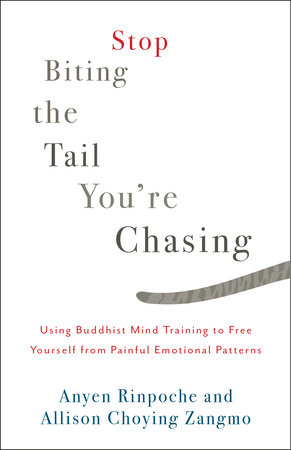 Stop Biting the Tail You're Chasing by Anyen Rinpoche and Allison Choying Zangmo