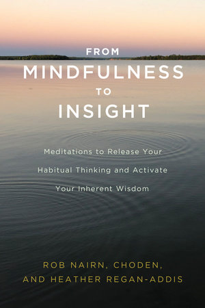 From Mindfulness to Insight by Rob Nairn, Choden and Heather Regan-Addis