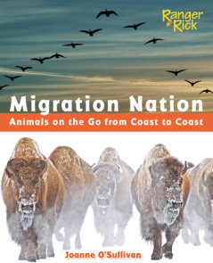 Migration Nation (National Wildlife Federation)