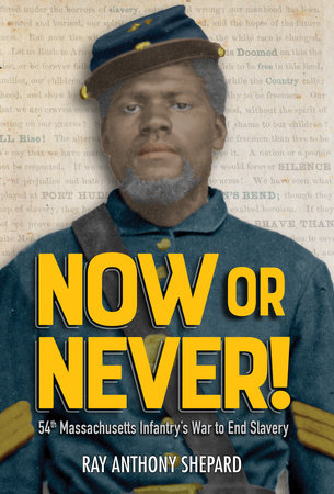 Now or Never! by Ray Anthony Shepard