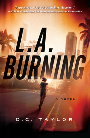 L. A. Burning by D. C. Taylor