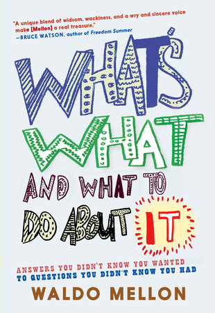 What's What and What to Do About It by Waldo Mellon