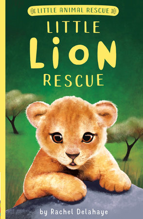 Little Lion Rescue by Rachel Delahaye; illustrated by Suzie Mason and Artful Doodlers