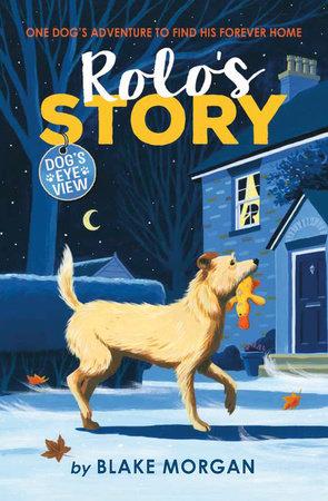 Rolo's Story by Blake Morgan