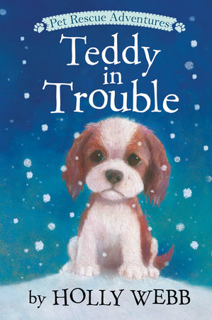 Teddy in Trouble by Holly Webb