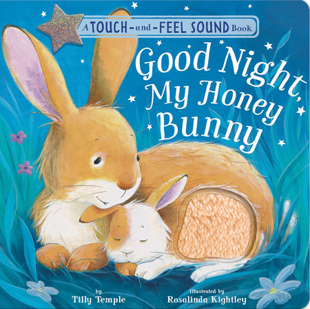 Good Night, My Honey Bunny by Tilly Temple