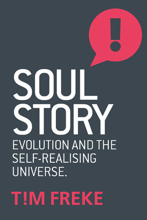 Soul Story by Tim Freke