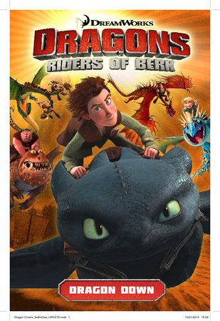 Dragons Riders of Berk: Dragon Down by Simon Furman