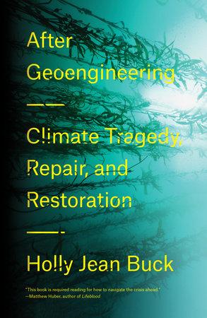 After Geoengineering by Holly Jean Buck