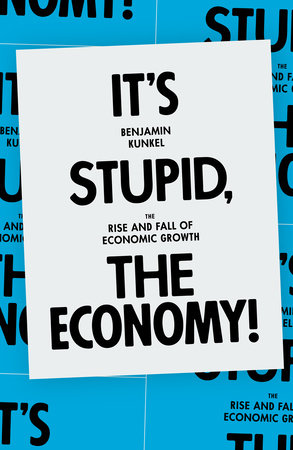 It's Stupid, the Economy! by Benjamin Kunkel