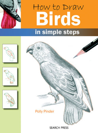 How to Draw Birds in Simple Steps by Polly Pinder