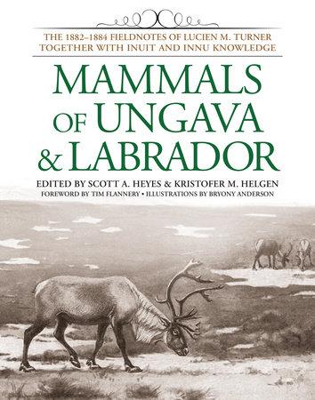 Mammals of Ungava and Labrador by