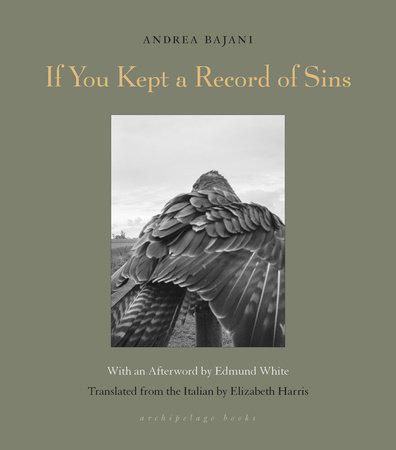 If You Kept a Record of Sins by Andrea Banjani