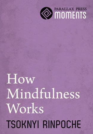 How Mindfulness Works by Tsoknyi Rinpoche