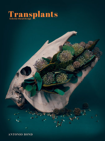 Transplants by Antonio Bond
