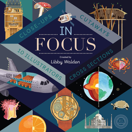 In Focus by Libby Walden