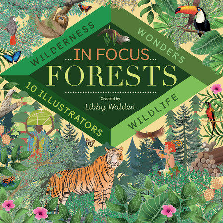 In Focus: Forests by Libby Walden