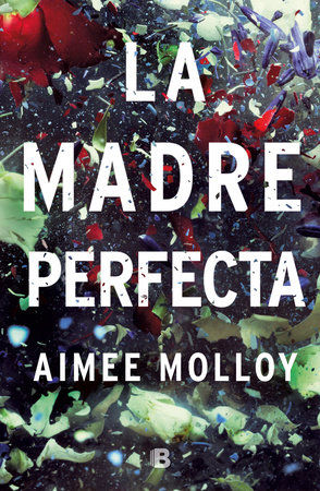 La madre perfecta / The Perfect Mother by Aimee Molloy