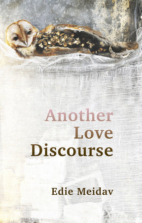 Another Love Discourse by Edie Meidav