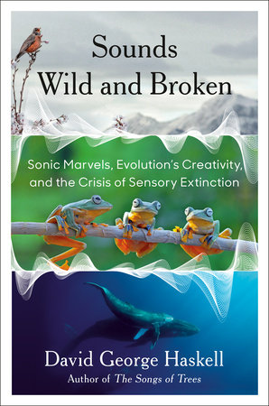 Sounds Wild and Broken by David George Haskell