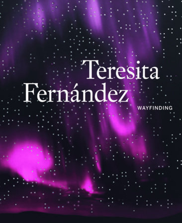 Teresita Fernández by
