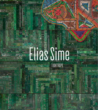 Elias Sime by Tracy L. Adler