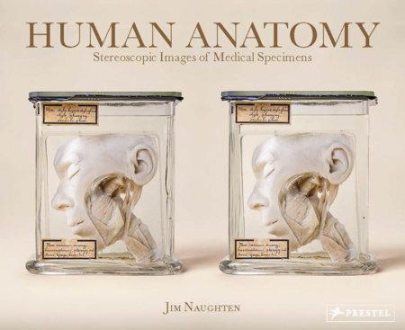 Human Anatomy by Jim Naughten